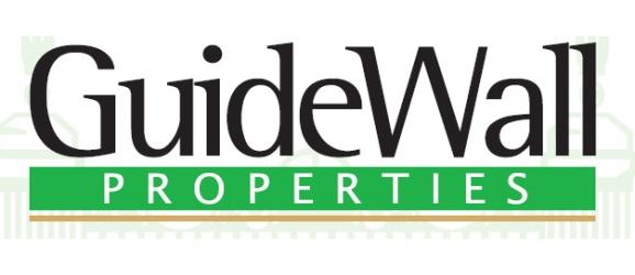 Guidewall Properties