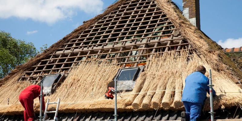 Why you should consider thatching your house