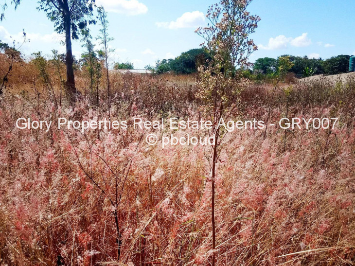 Land for Sale in Borrowdale