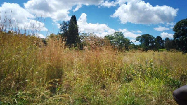 Land for Sale in Athlone